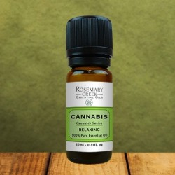 Cannabis Sativa essential oil