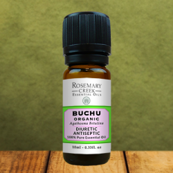 Organic Buchu essential oil