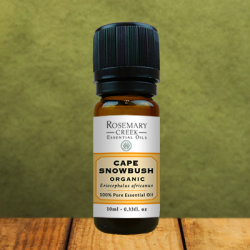 Organic Cape Snowbush essential oil