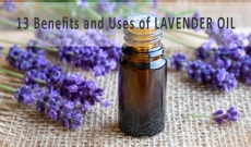 13 Benefits and Uses of Lavender Essential Oil
