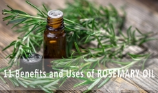 11 Benefits and Uses of Rosemary Essential Oil