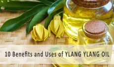 10 Benefits and Uses of Ylang Ylang Essential Oil