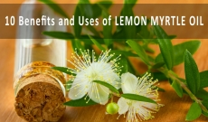 10 Amazing Benefits and Uses of Lemon Myrtle Essential Oil